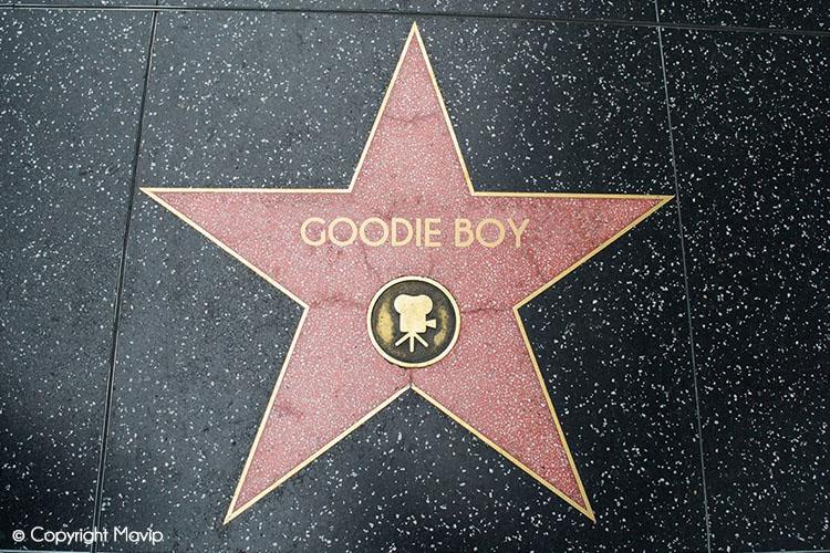 l'album des photos de vacances de Goodie Boy